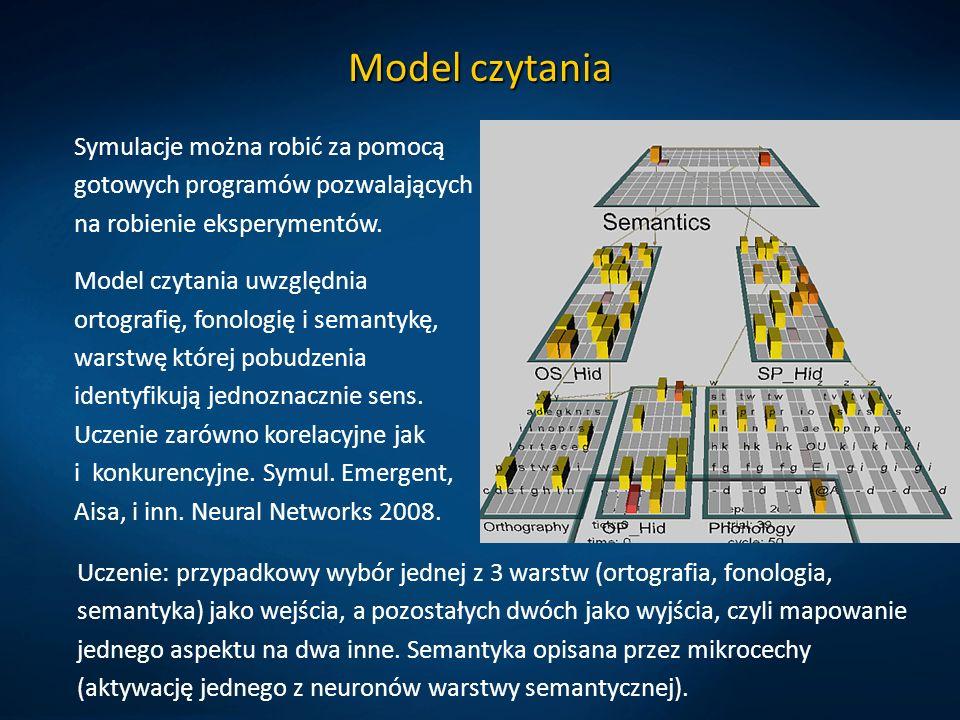Model czytania Uczenie: przypadkowy wybór jednej z 3 warstw (ortografia, fonologia, semantyka) jako wejścia, a pozostałych dwóch jako wyjścia, czyli mapowanie jednego aspektu na dwa inne.