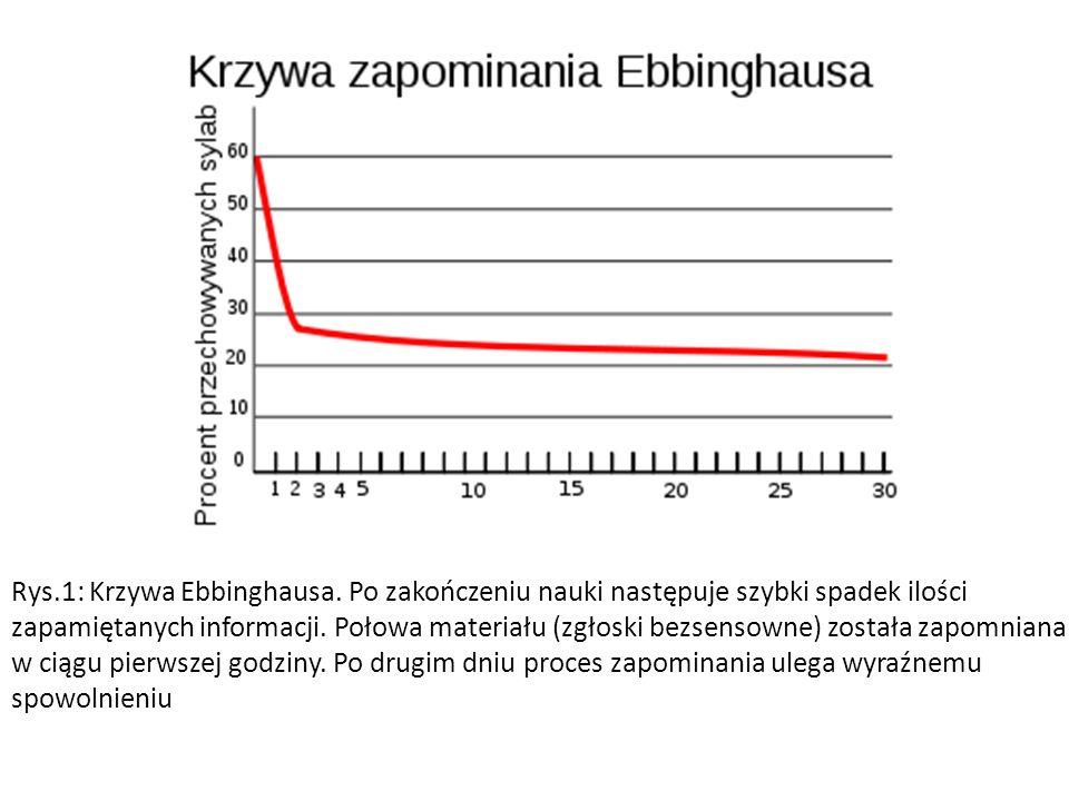 Rys.1: Krzywa Ebbinghausa.