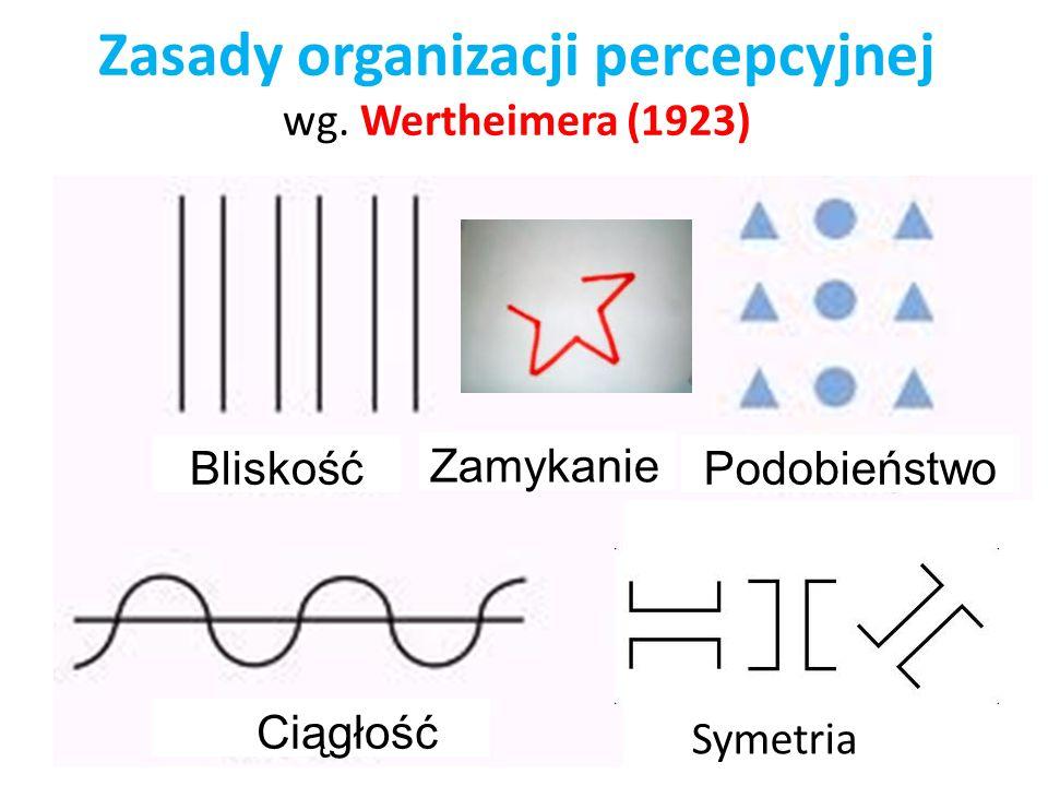 Zasady organizacji percepcyjnej wg.
