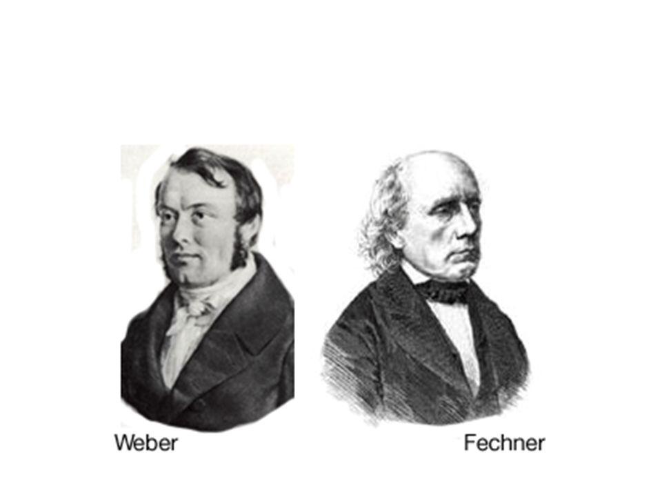 Próg różnicy i ledwie dostrzegalna różnica między bodźcami ERNST WEBER (1795-1878) Weber nie był psychologiem ani też psychologia nie była głównym przedmiotem jego zainteresowania.