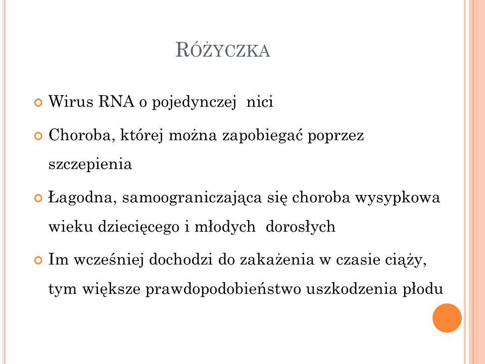 R ÓŻYCZKA Wirus RNA o pojedynczej nici Choroba, której można zapobiegać poprzez szczepienia Łagodna, samoograniczająca się choroba wysypkowa wieku dzi