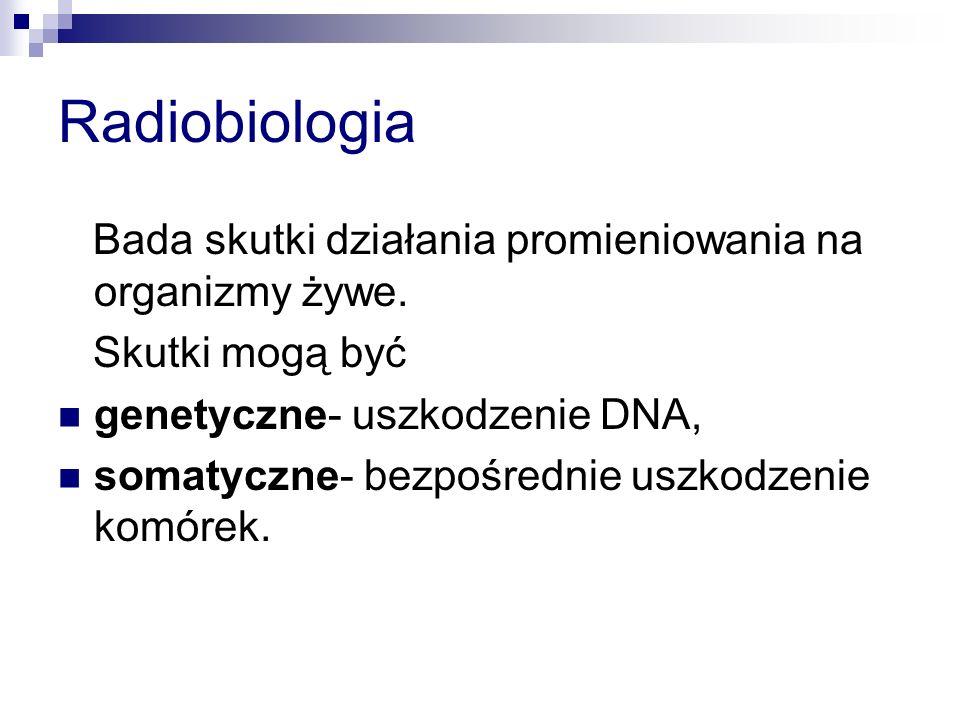 Radiobiologia Bada skutki działania promieniowania na organizmy żywe. Skutki mogą być genetyczne- uszkodzenie DNA, somatyczne- bezpośrednie uszkodzeni