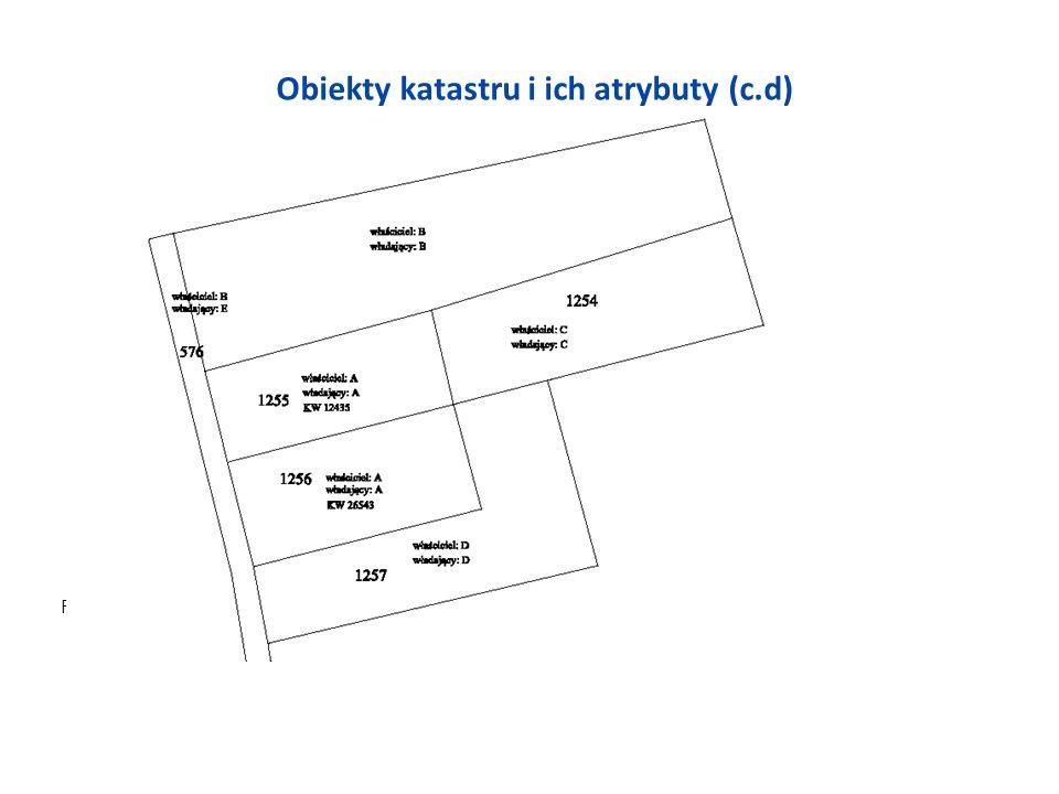 Obiekty katastru i ich atrybuty (c.d) Rys. 5 Wyjątki od definicji działki według rozp01