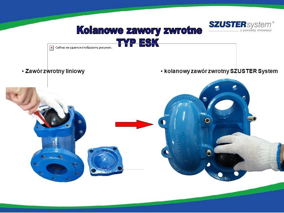 rozwiązanie SZUSTER System
