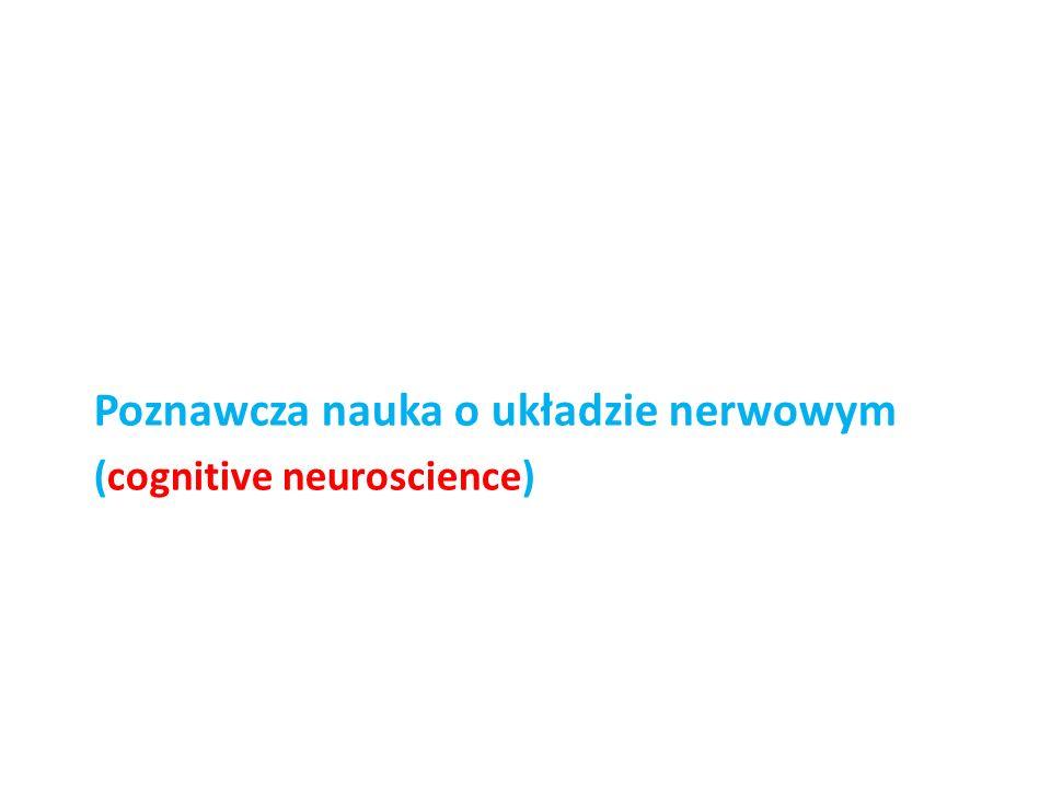 Poznawcza nauka o układzie nerwowym (cognitive neuroscience)