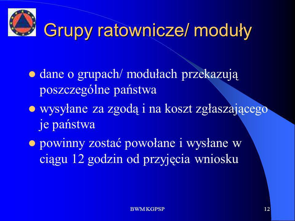 BWM KGPSP12 Grupy ratownicze/ moduły dane o grupach/ modułach przekazują poszczególne państwa wysyłane za zgodą i na koszt zgłaszającego je państwa po