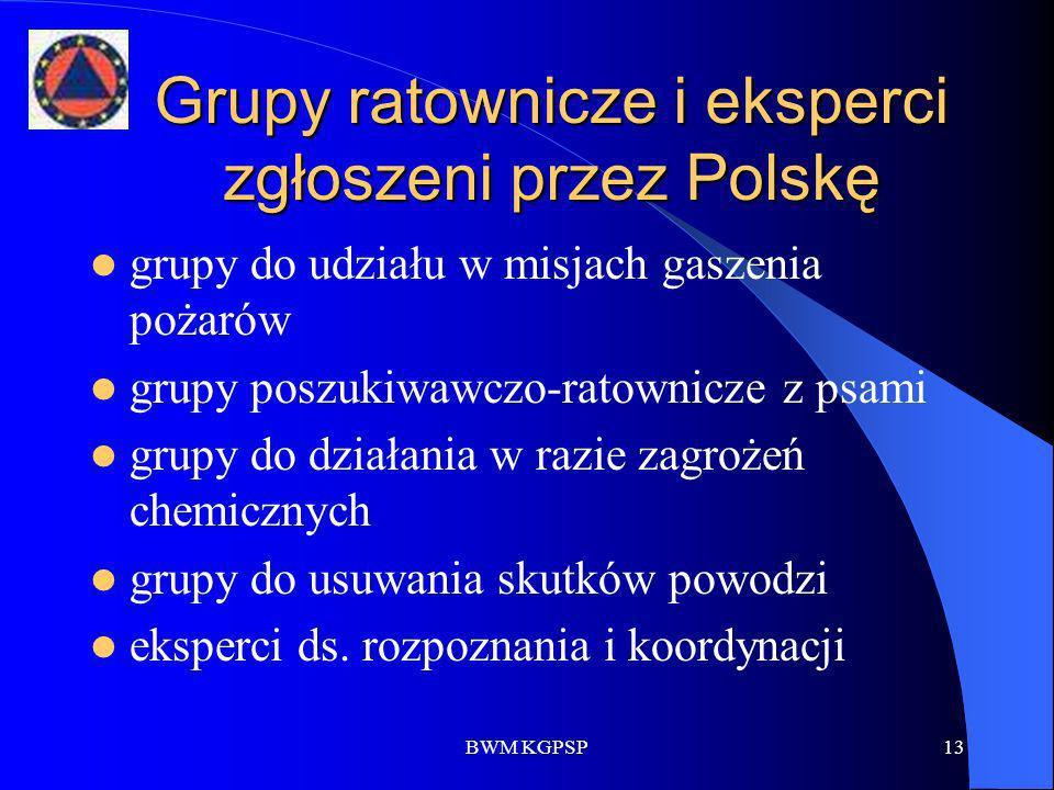 BWM KGPSP13 Grupy ratownicze i eksperci zgłoszeni przez Polskę grupy do udziału w misjach gaszenia pożarów grupy poszukiwawczo-ratownicze z psami grup
