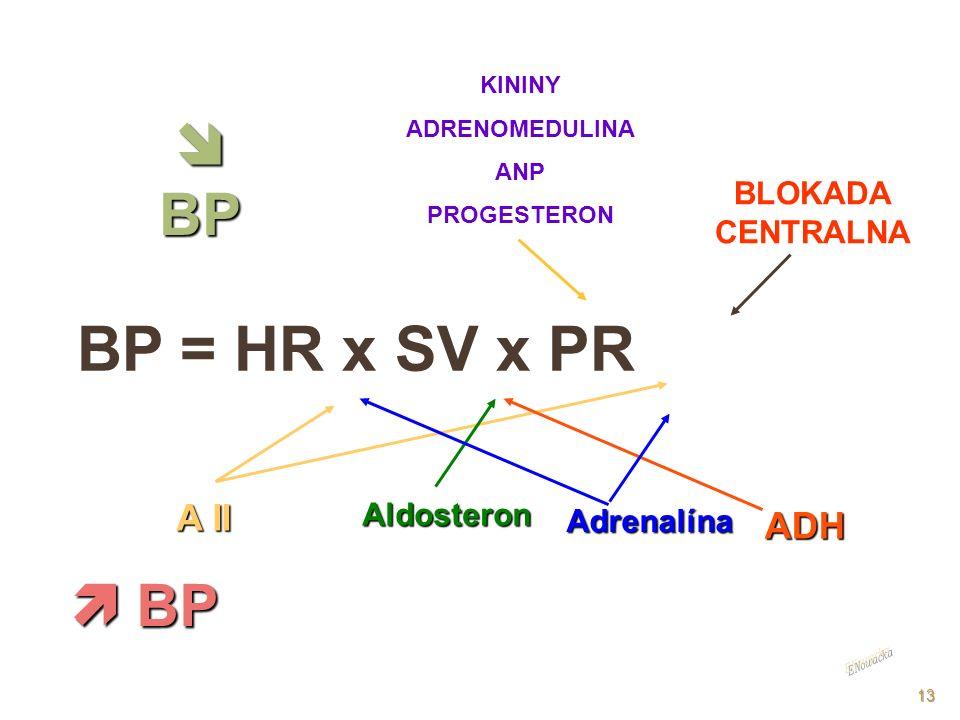 BP = HR x SV x PR A II KININY ADRENOMEDULINA ANP PROGESTERON BP BP ADH Aldosteron Adrenalína BP BP BLOKADA CENTRALNA 13