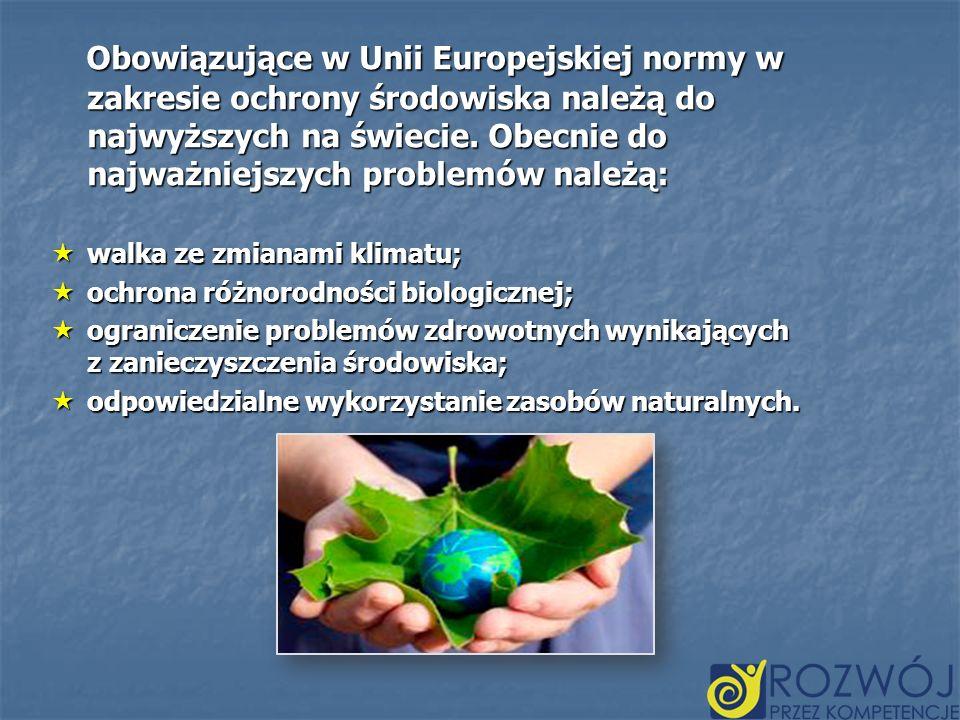 Obowiązujące w Unii Europejskiej normy w zakresie ochrony środowiska należą do najwyższych na świecie. Obecnie do najważniejszych problemów należą: Ob