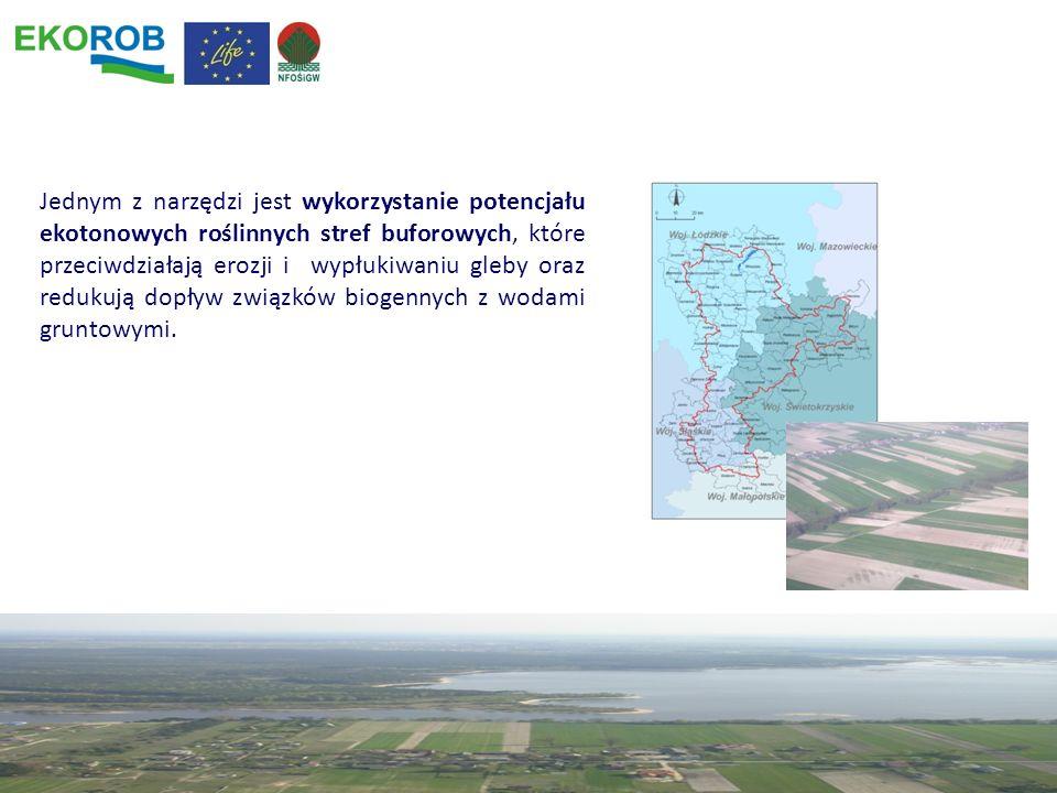 Jednym z narzędzi jest wykorzystanie potencjału ekotonowych roślinnych stref buforowych, które przeciwdziałają erozji i wypłukiwaniu gleby oraz reduku