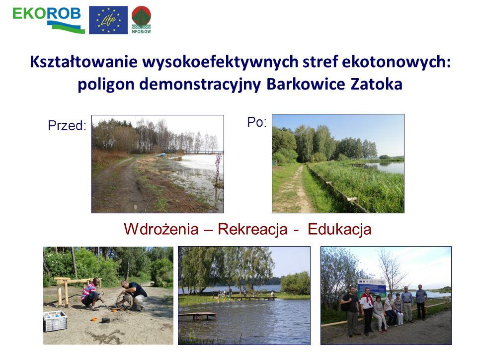 Kształtowanie wysokoefektywnych stref ekotonowych: poligon demonstracyjny Barkowice Zatoka Przed: Po: Wdrożenia – Rekreacja - Edukacja