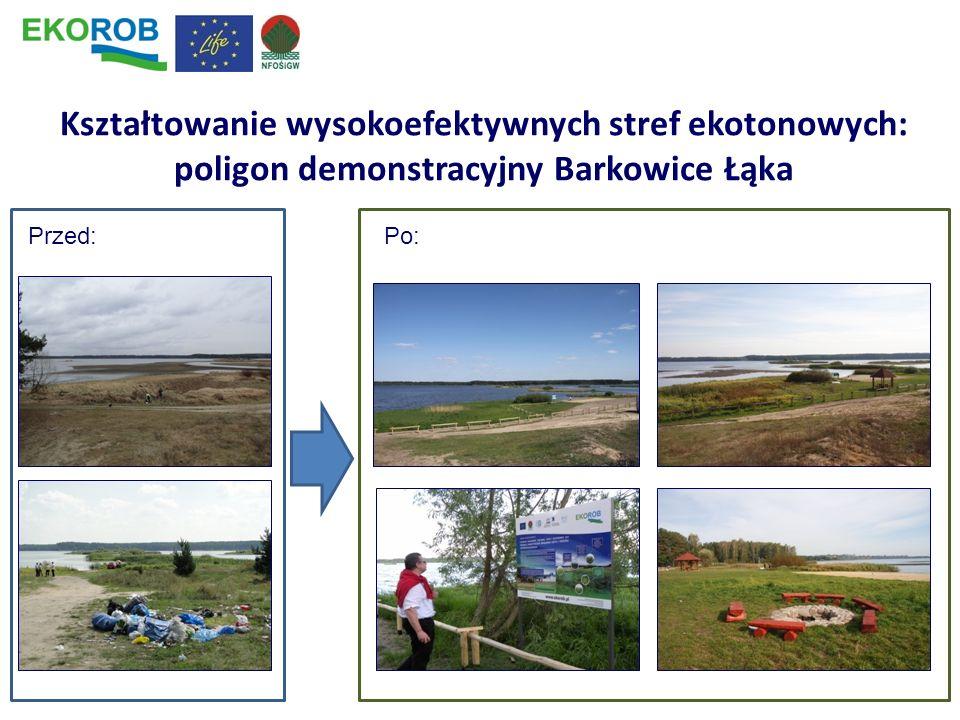 Kształtowanie wysokoefektywnych stref ekotonowych: poligon demonstracyjny Barkowice Łąka Przed:Po: