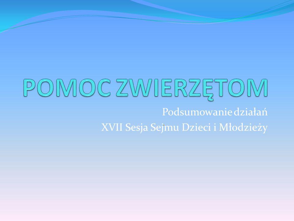 Podsumowanie działań XVII Sesja Sejmu Dzieci i Młodzieży