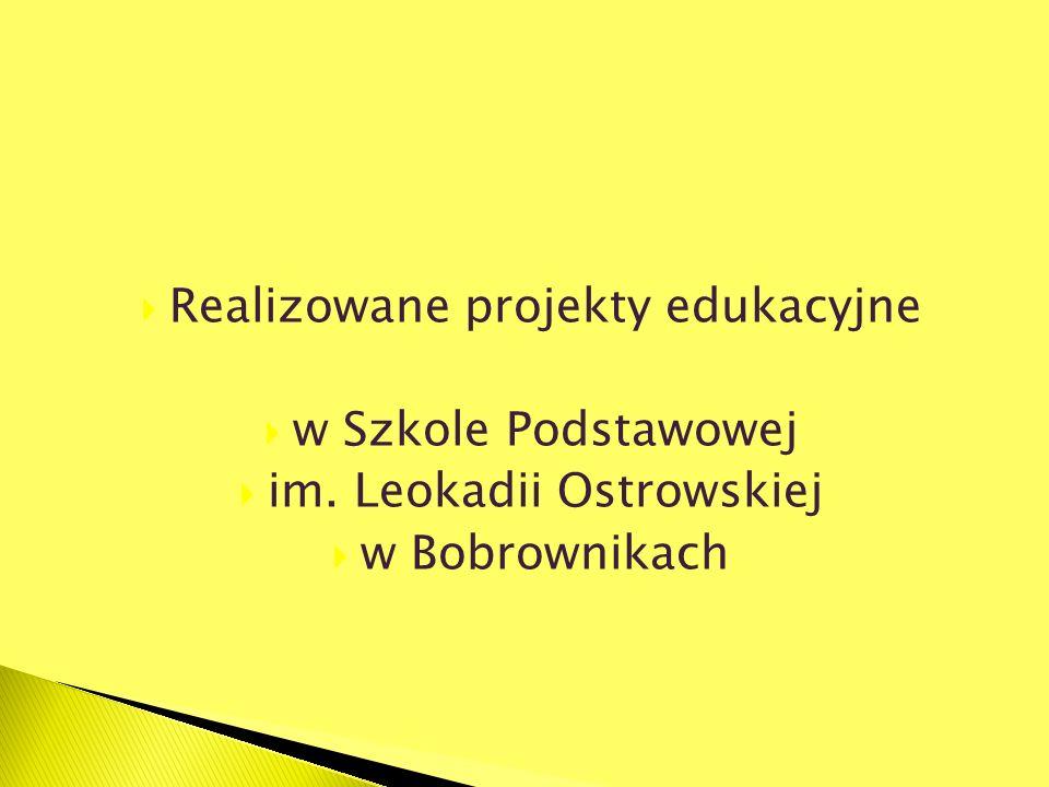 Realizowane projekty edukacyjne w Szkole Podstawowej im. Leokadii Ostrowskiej w Bobrownikach