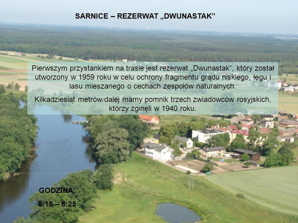SARNICE – REZERWAT DWUNASTAK Pierwszym przystankiem na trasie jest rezerwat Dwunastak, który został utworzony w 1959 roku w celu ochrony fragmentu grą