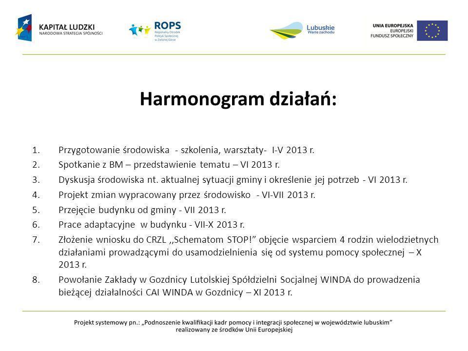 Harmonogram działań: 1.Przygotowanie środowiska - szkolenia, warsztaty- I-V 2013 r.