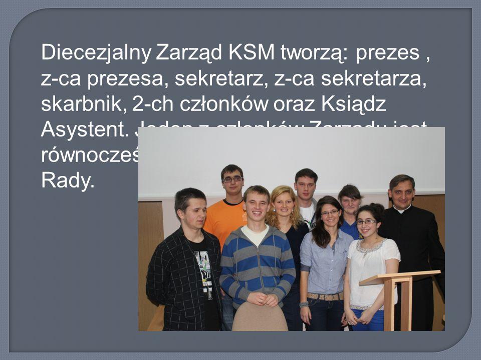 Diecezjalny Zarząd KSM tworzą: prezes, z-ca prezesa, sekretarz, z-ca sekretarza, skarbnik, 2-ch członków oraz Ksiądz Asystent. Jeden z członków Zarząd