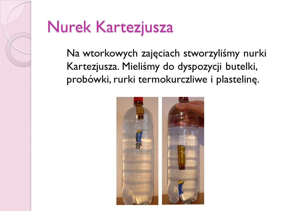 Nurek Kartezjusza Na wtorkowych zajęciach stworzyliśmy nurki Kartezjusza. Mieliśmy do dyspozycji butelki, probówki, rurki termokurczliwe i plastelinę.