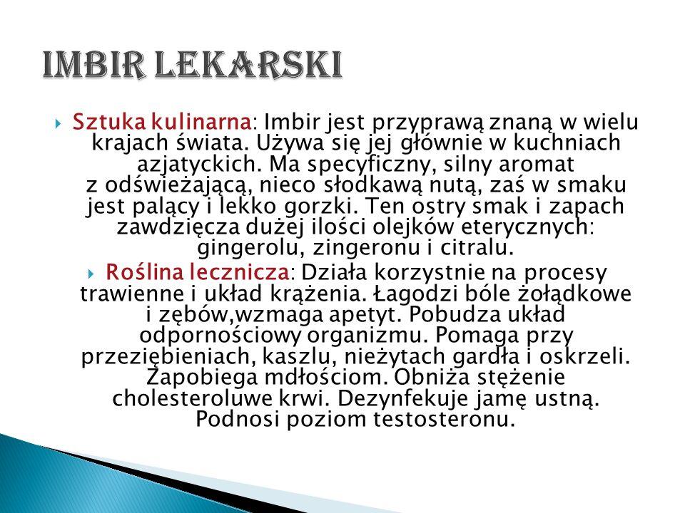Sztuka kulinarna: Imbir jest przyprawą znaną w wielu krajach świata. Używa się jej głównie w kuchniach azjatyckich. Ma specyficzny, silny aromat z odś