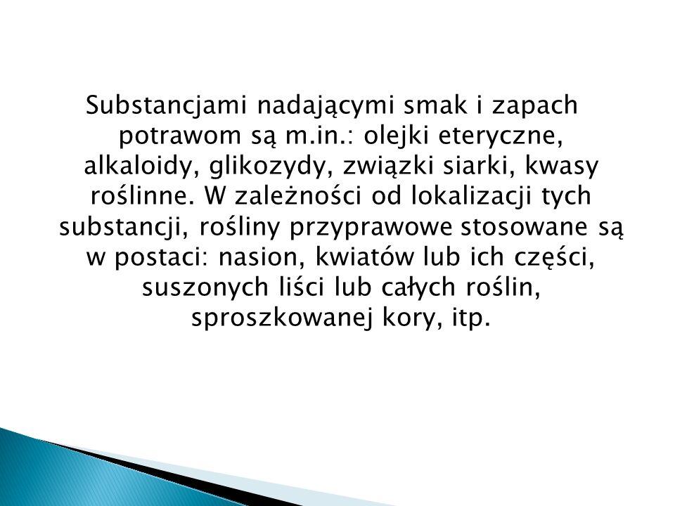 Roślina lecznicza Surowiec zielarski: korzeń zawiera przede wszystkim olejek lotny (terpeinol, estry, kwas octowy, kwas walerianowy), skrobię w dużych ilościach, cukry, żywice, kumarynę, kwasy organiczne, związki ftalidowe (pochodne kwasu ftalowego – butyloftalidy), kumaryny i furanokumaryny (m.in.