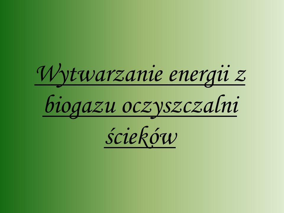 Jak wykorzystać rozkładające się śmieci Kompostowanie Biogaz – ocieplanie Paliwa alternatywne Składowanie resztek organicznych na wysypiskach nie jest