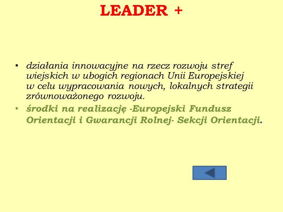 LEADER + działania innowacyjne na rzecz rozwoju stref wiejskich w ubogich regionach Unii Europejskiej w celu wypracowania nowych, lokalnych strategii zrównoważonego rozwoju.