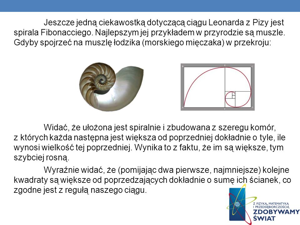 Jeszcze jedną ciekawostką dotyczącą ciągu Leonarda z Pizy jest spirala Fibonacciego. Najlepszym jej przykładem w przyrodzie są muszle. Gdyby spojrzeć