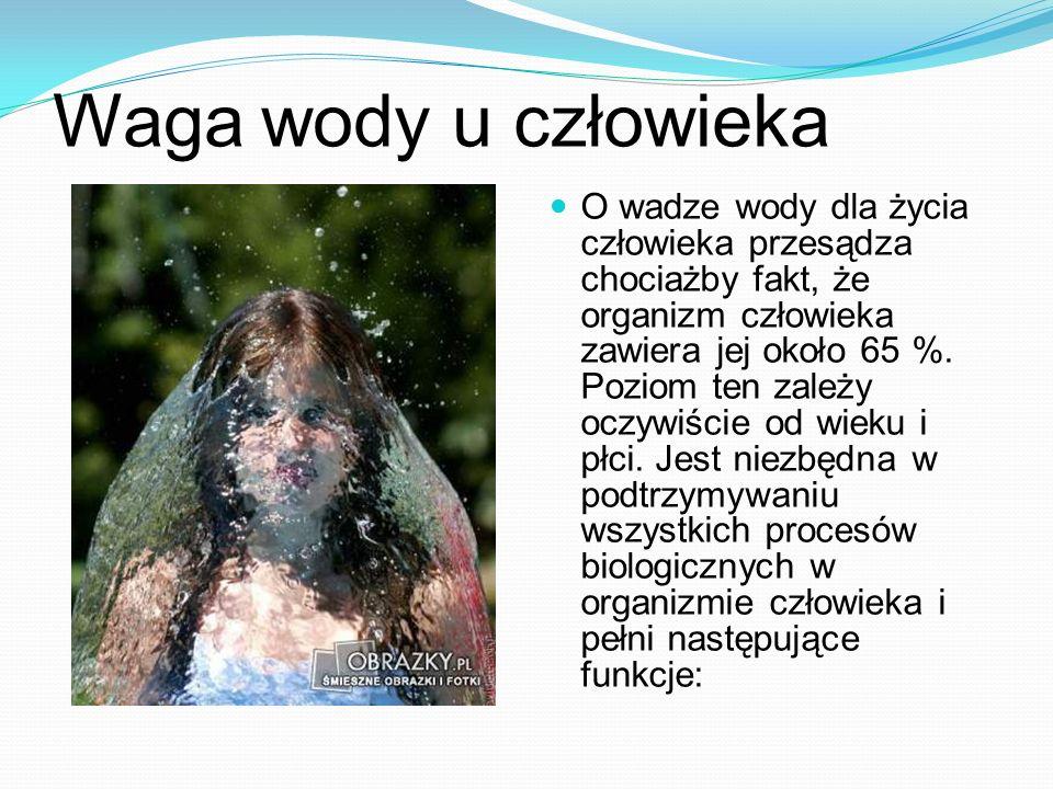 Waga wody u człowieka O wadze wody dla życia człowieka przesądza chociażby fakt, że organizm człowieka zawiera jej około 65 %. Poziom ten zależy oczyw