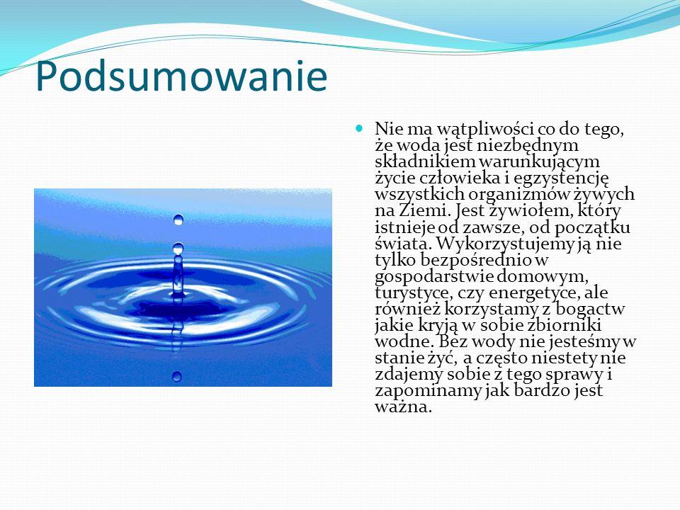 Podsumowanie Nie ma wątpliwości co do tego, że woda jest niezbędnym składnikiem warunkującym życie człowieka i egzystencję wszystkich organizmów żywyc