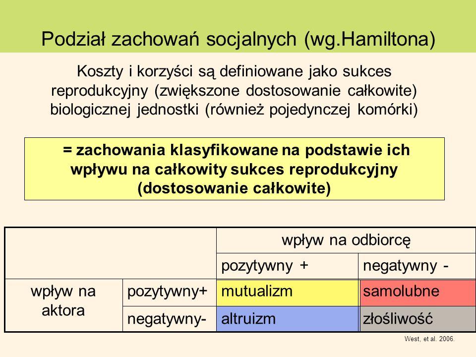 Podział zachowań socjalnych (wg.Hamiltona) West, et al. 2006. złośliwośćaltruizmnegatywny- samolubnemutualizmpozytywny+wpływ na aktora negatywny -pozy