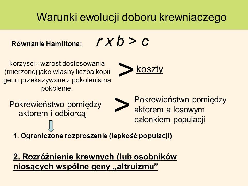 Pokrewieństwo pomiędzy aktorem i odbiorcą Warunki ewolucji doboru krewniaczego Pokrewieństwo pomiędzy aktorem a losowym członkiem populacji > korzyści