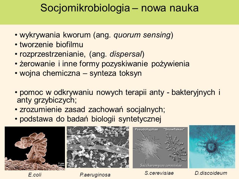 wykrywania kworum (ang. quorum sensing) tworzenie biofilmu rozprzestrzenianie, (ang. dispersal) żerowanie i inne formy pozyskiwanie pożywienia wojna c