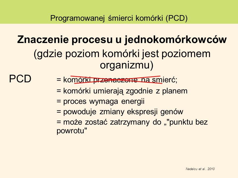 Znaczenie procesu u jednokomórkowców (gdzie poziom komórki jest poziomem organizmu) PCD = komórki przenaczone na smierć; = komórki umierają zgodnie z
