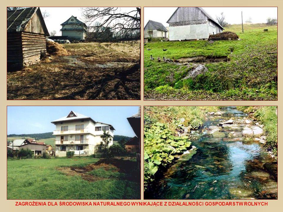 Ogromny zakres potrzeb w sanitacji wsi polskiej i wynikające z tego problemy ekonomiczne, techniczno-funkcjonalne, jak również ekologiczne sprawiają, że wielkoobszarowe kanalizacje zbiorcze z tzw.