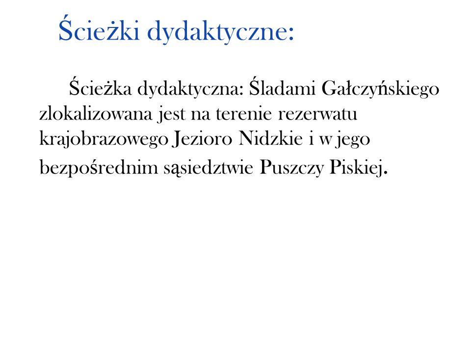 Ś cie ż ki dydaktyczne: Ś cie ż ka dydaktyczna: Ś ladami Ga ł czy ń skiego zlokalizowana jest na terenie rezerwatu krajobrazowego Jezioro Nidzkie i w