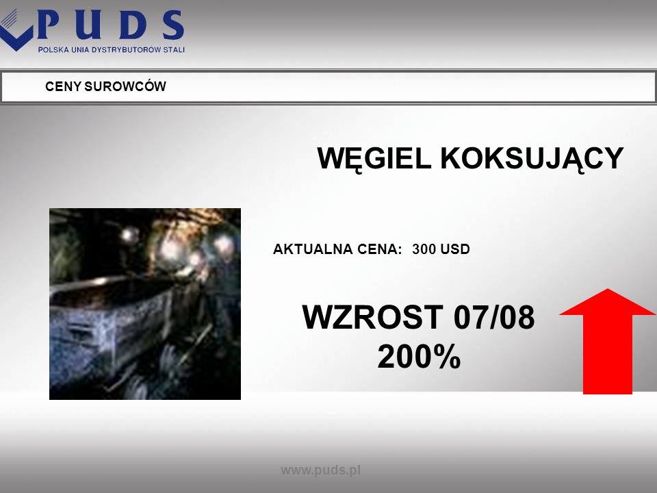 www.puds.pl CENY SUROWCÓW KOKS AKTUALNA CENA: powyżej 550 USD WZROST 04.07/04.08 175%
