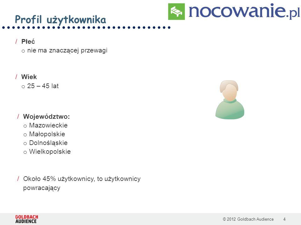 >> Nocowanie.pl Możliwości reklamowe