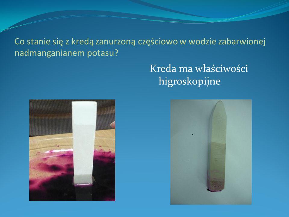 Co stanie się z kredą zanurzoną częściowo w wodzie zabarwionej nadmanganianem potasu? Kreda ma właściwości higroskopijne