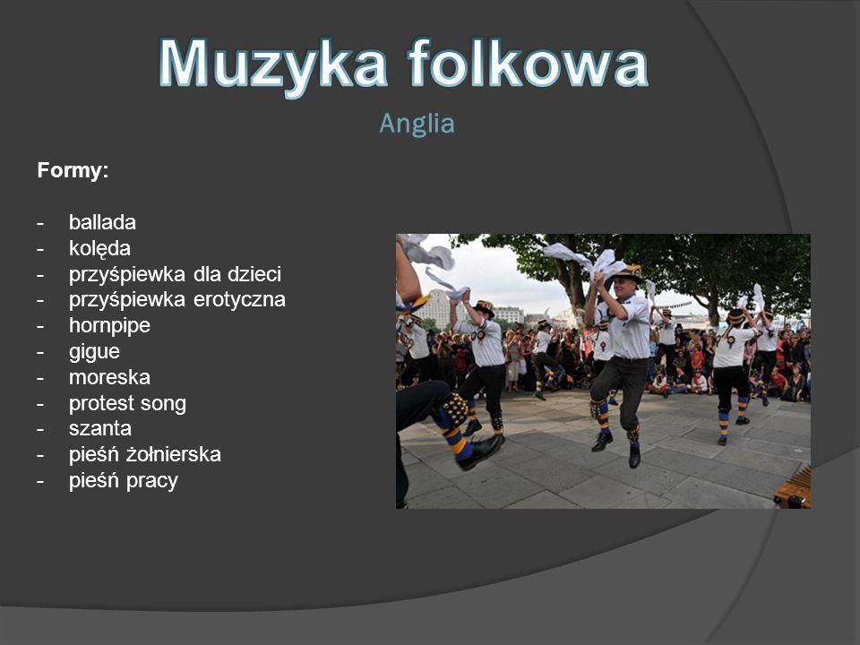 Formy: -ballada -kolęda -przyśpiewka dla dzieci -przyśpiewka erotyczna -hornpipe -gigue -moreska -protest song -szanta -pieśń żołnierska -pieśń pracy