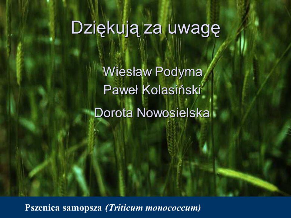 Pszenica samopsza (Triticum monococcum) Dziękują za uwagę Wiesław Podyma Paweł Kolasiński Dorota Nowosielska