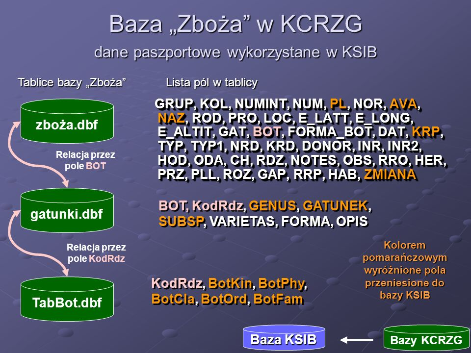 CatalogNum <- PL Kingdom <- BotKin Phylum <- BotPhy Class <– BotCla bioOrder <- BotOrd Family <- BotFam Genus <- GENUS Species <- GATUNEK Baza Zboża w KCRZG dane paszportowe wykorzystane w KSIB Baza KSIB Bazy KCRZG MS SQL FoxProFoxPro Pole AVA zostało użyte do przesłania do bazy KSIB jedynie danych o obiektach dla których są dostępne nasiona Pole PL zawiera unikalny, w ramach banku genów, numer obiektu