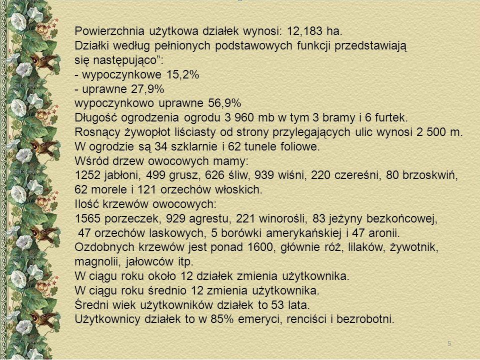 Powierzchnia użytkowa działek wynosi: 12,183 ha. Działki według pełnionych podstawowych funkcji przedstawiają się następująco: - wypoczynkowe 15,2% -