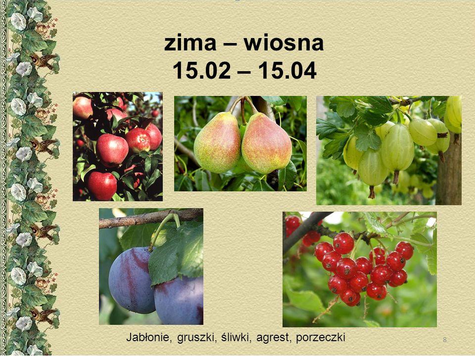 zima – wiosna 15.02 – 15.04 Jabłonie, gruszki, śliwki, agrest, porzeczki 8