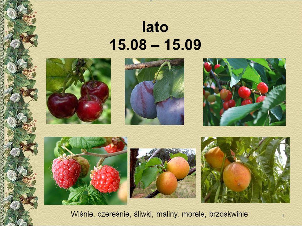 lato 15.08 – 15.09 Wiśnie, czereśnie, śliwki, maliny, morele, brzoskwinie 9