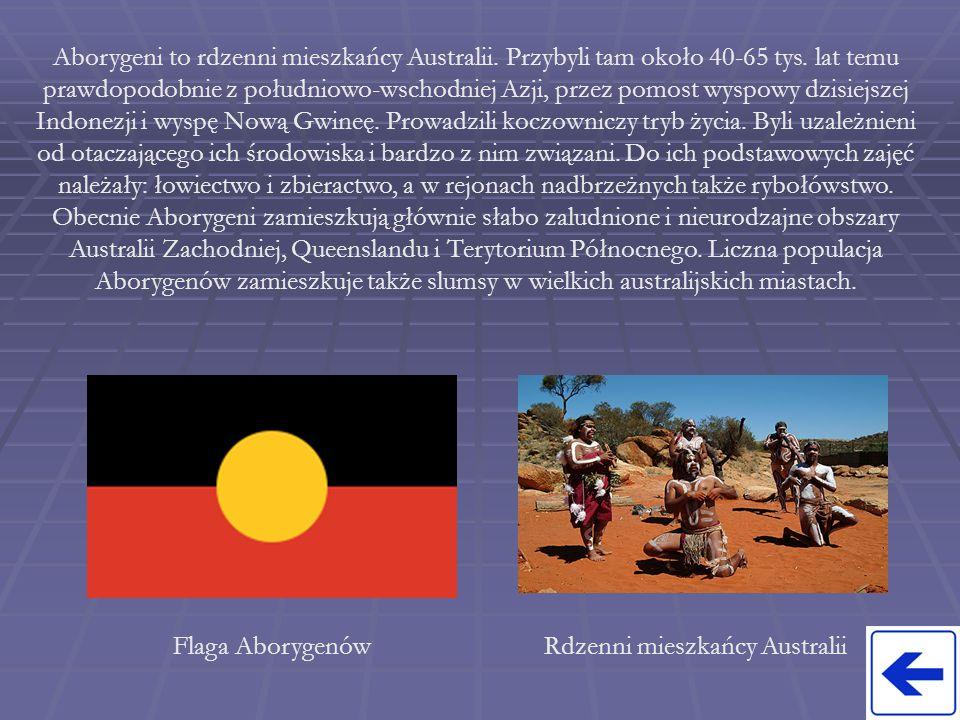 Aborygeni to rdzenni mieszkańcy Australii. Przybyli tam około 40-65 tys. lat temu prawdopodobnie z południowo-wschodniej Azji, przez pomost wyspowy dz
