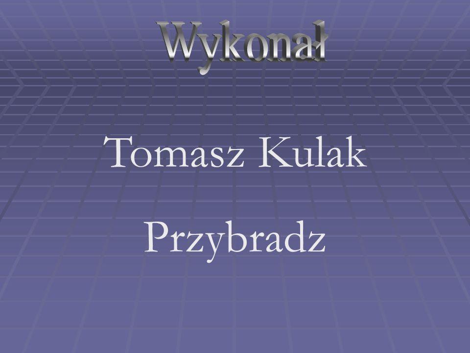 Tomasz Kulak Przybradz
