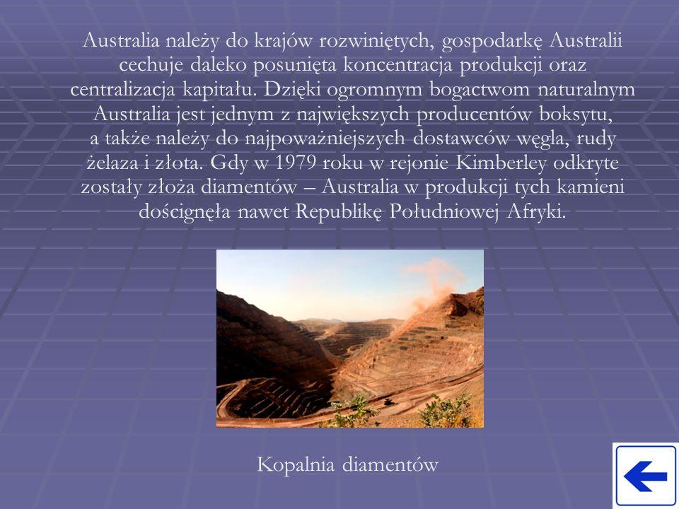 Grunty orne stanowią jedynie 4% terytorium Australii, z czego uprawia się 80%.