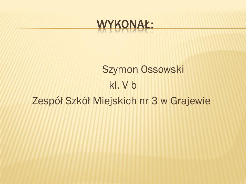 Szymon Ossowski kl. V b Zespół Szkół Miejskich nr 3 w Grajewie