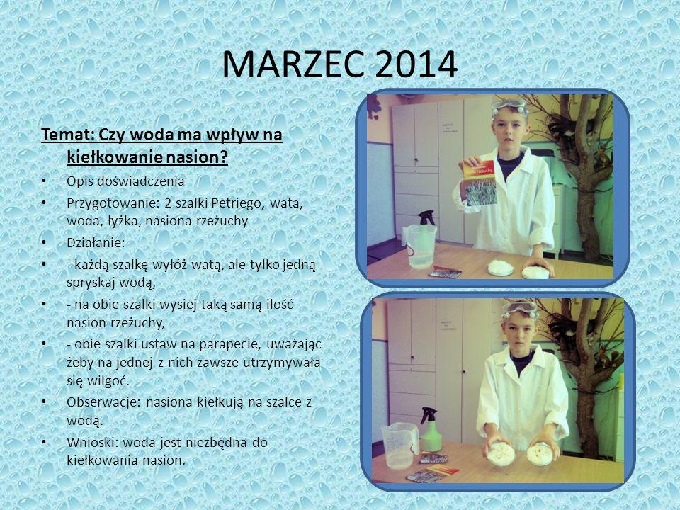 MARZEC 2014 Temat: Czy woda ma wpływ na kiełkowanie nasion.