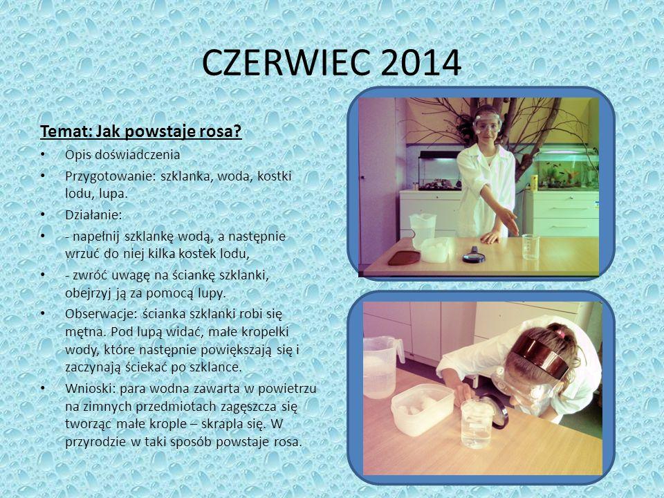 CZERWIEC 2014 Temat: Jak powstaje rosa.
